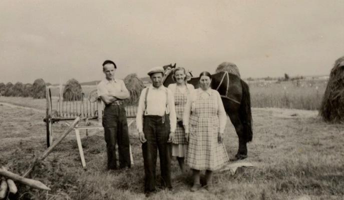 Här ser vi Karl Korsbäck, Otto Björklund, Alice Dahlroos och Amanda Björklund i höbärgningstagen i Palon.