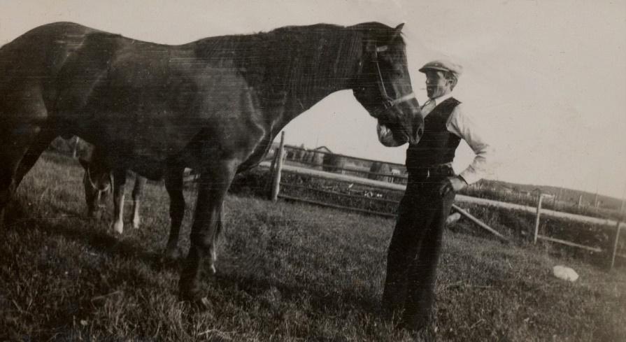 Här Otto Björklund med sin stolthet Odin, som han hade köpt från Kristinestad. Odin var snäll och foglig, helt olik hästen Pärla som syns bakom Odin.
