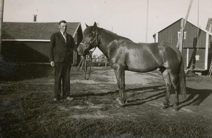 Emil Klåvus var känd som en hästkarl som gärna körde i kapp, till exempel från kyrkan i Lappfjärd hem till Dagsmark.