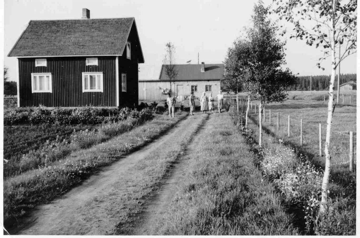 Här Alice och Eskil Norrgårds hus på Dagsmarkvägen 228.