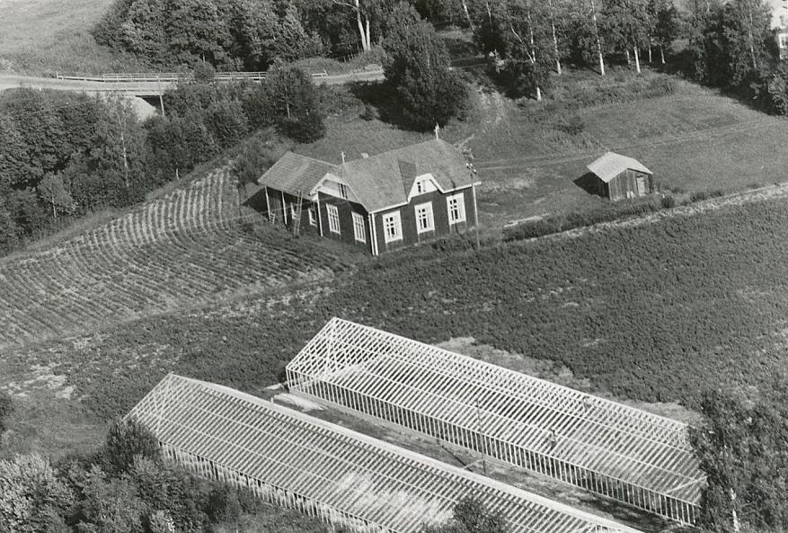 Flygfoto från sommaren 1971. Backlund Ragnars växthus till höger är under byggnad och man kan se Kurt och John på taket i färd med att sätta glasrutorna på plats.
