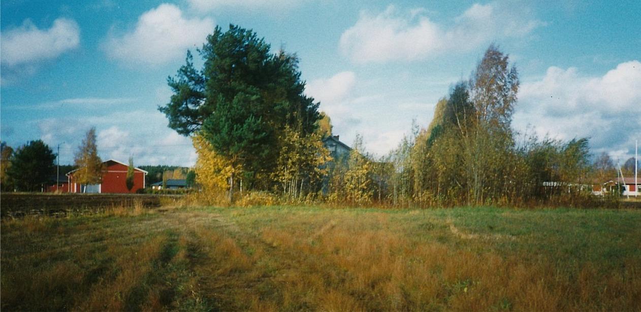 När huset revs var tomten så igenväxt att bara en del av den södra gaveln syns. Till vänster syns det som i dag är Lindbergs potatislager och längst till höger syns den gård där Ragnar och Jenny Backlunds bodde i tiderna. Foto: John Backlund.