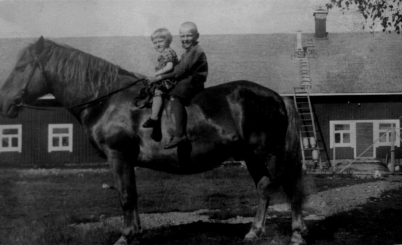 Här ser vi barnen Ruth och Alf ridande på Pålle hemma på Åbackan. Foto Artur Lövholm.
