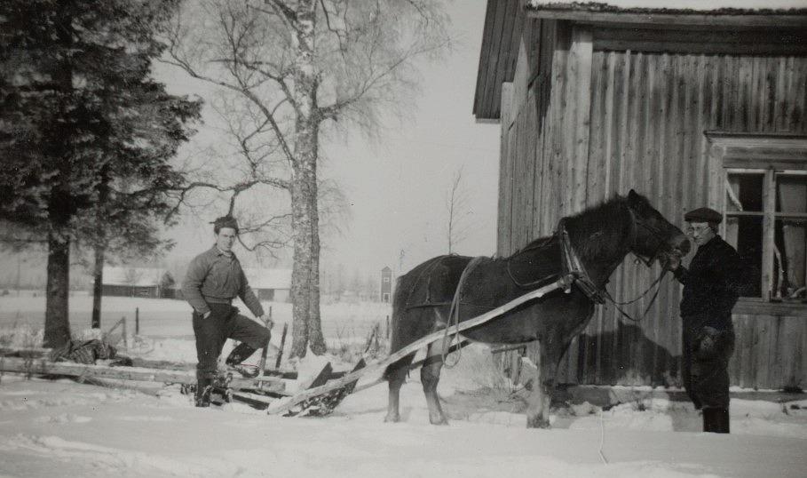 Arvid Lillkull var svår att fånga på foton men ser vi där står och håller i hästen Pontus där Ulla. Till vänster står Ruben Ånäs och mitt i bild bakom hästen skymtar Nylundas transformatorn.
