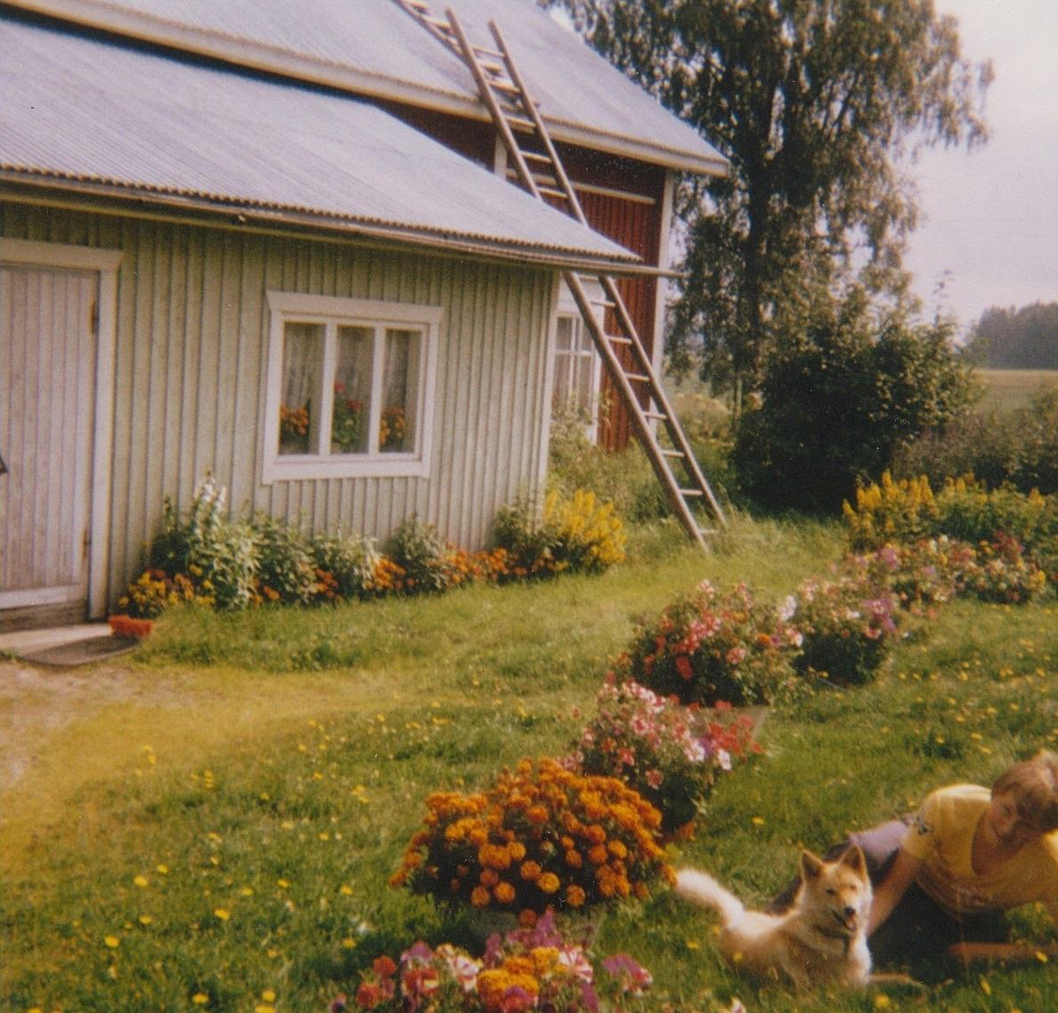 Här gården och blommorna fotograferade från gårdssidan. Hunden Milli fick också vara med.