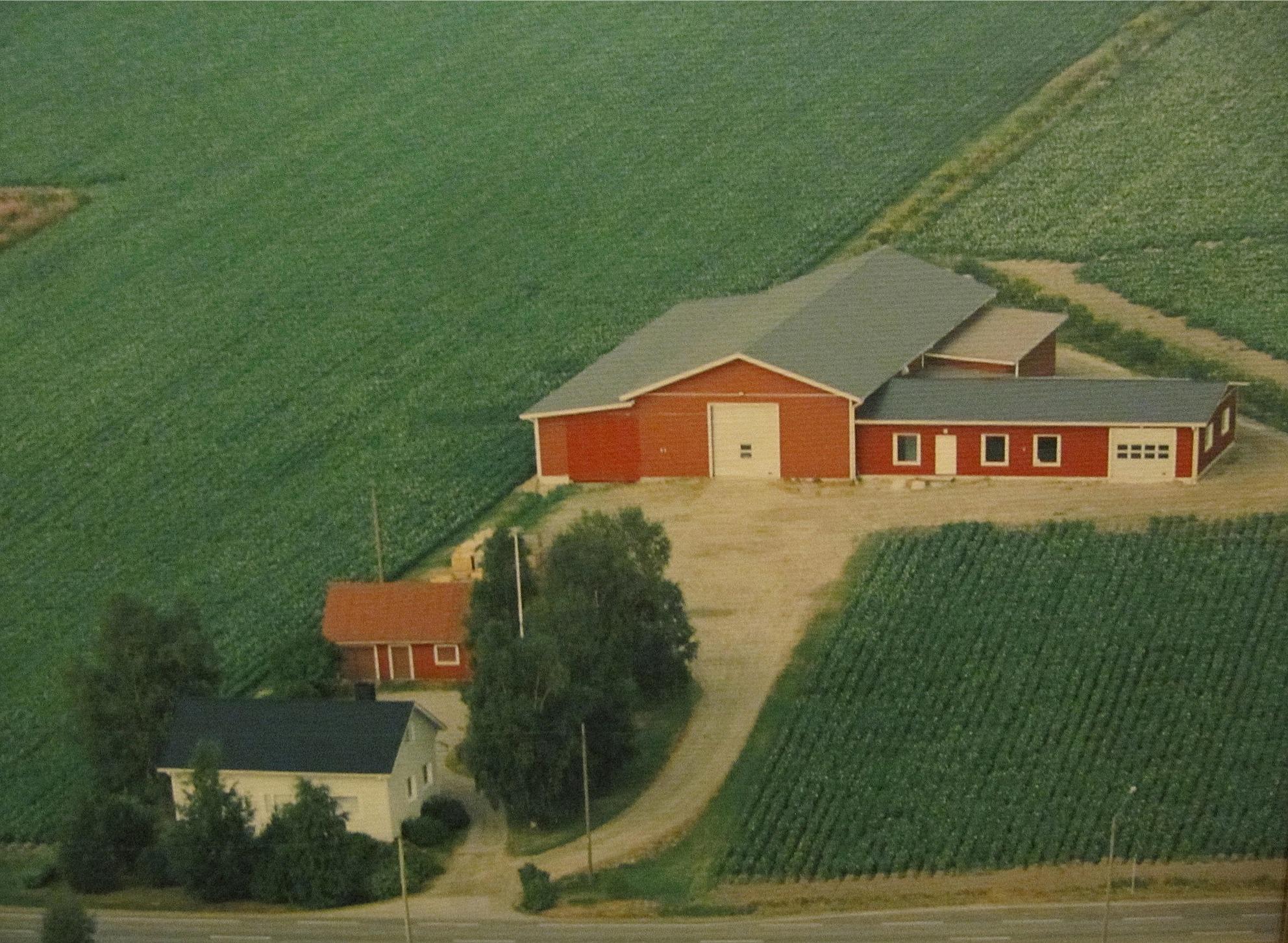 På flygfotot från 1994 så syns Veli Kangas gård nere till vänster. Den stora byggnaden i bakgrunden är Harry Kangas potatislager och verkstad.