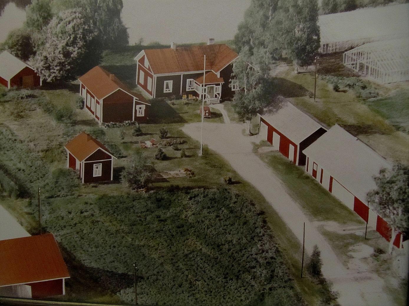 Flygfoto från 1971 över Backlundas gård.
