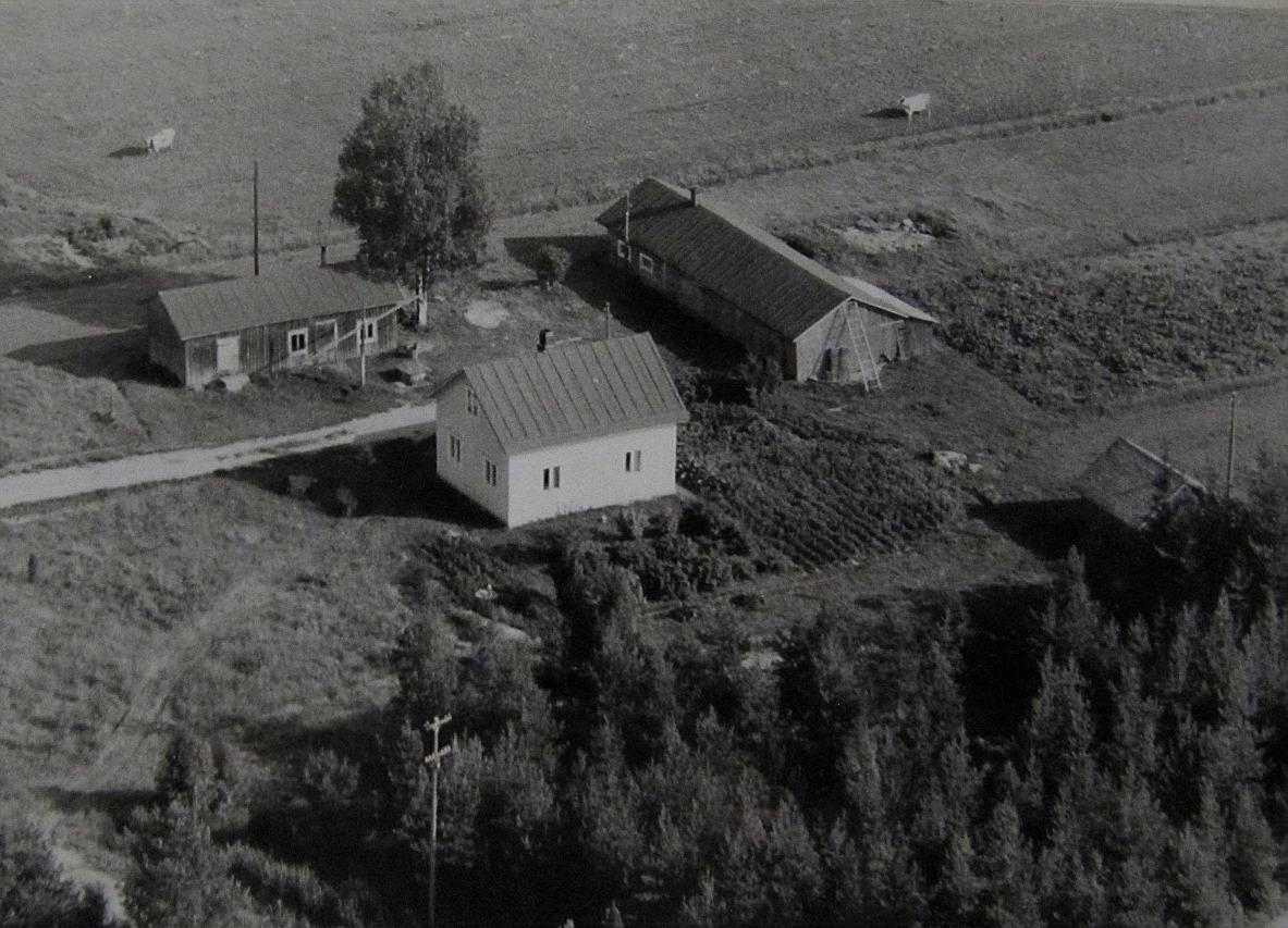 På flygfotot från 1960-talet så ser Lauris gård ganska ensam ut.