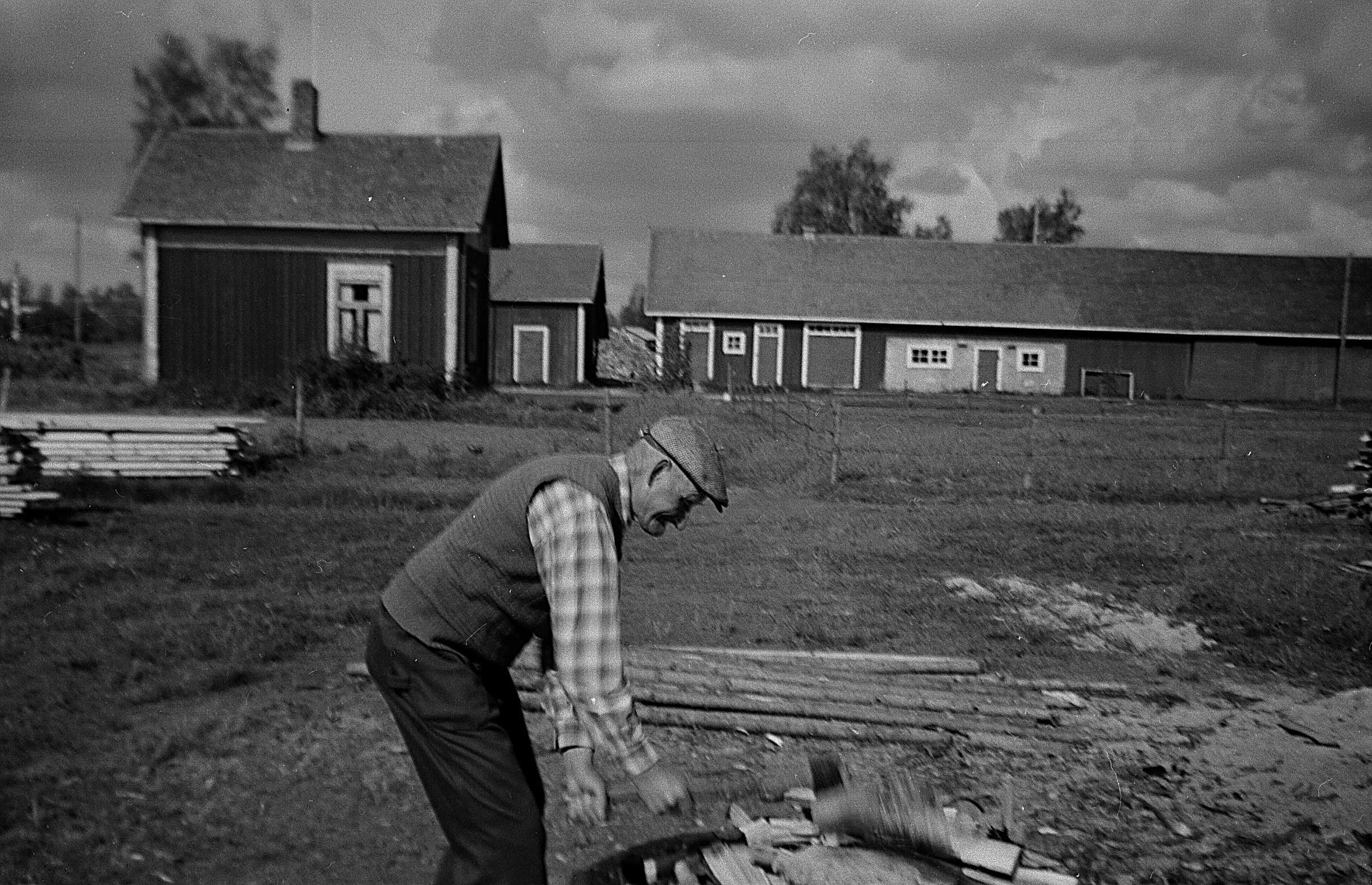 Den här bilden av Frans Agnäs klyvande ved åt sin syster Ida Backlund på vedbacken är tagen i början på 1950-talet. Byggnaden till vänster användes som bastu och längre bak syns uthusen som inrymde stall, fähus och röckhus.