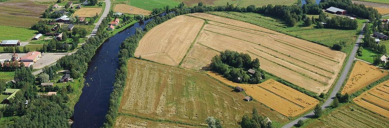 """På flygbilden syns """"Skomakas"""" alltså Rosenlundas eller Lammis gård som en grön oas mitt på åkrarna."""