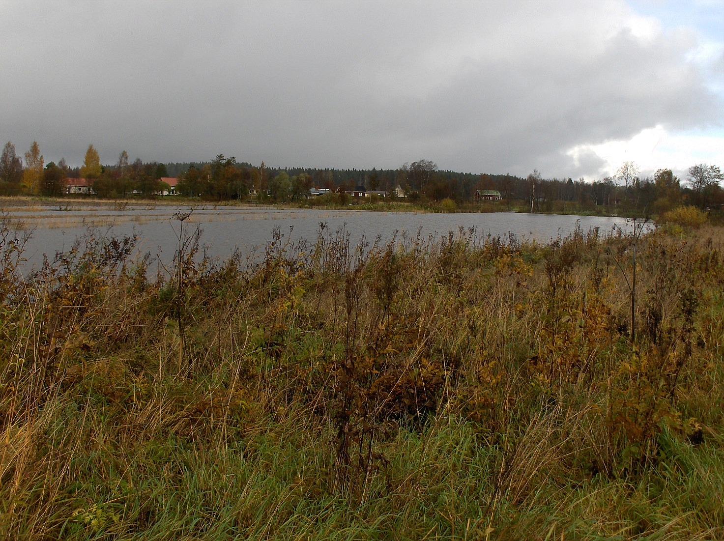 På grund av häftiga skyfall var åkrarna i Storsvedan översvämmade hösten 2012.