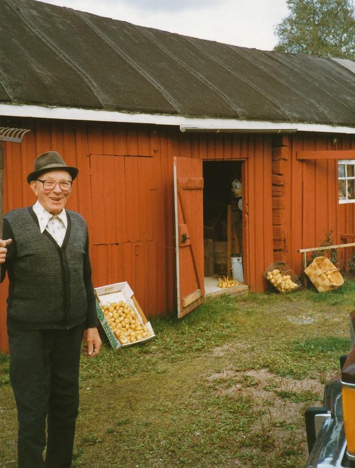 Arthur hemma i Dagsmark år 1983, då han visar upp de fina lökarna.