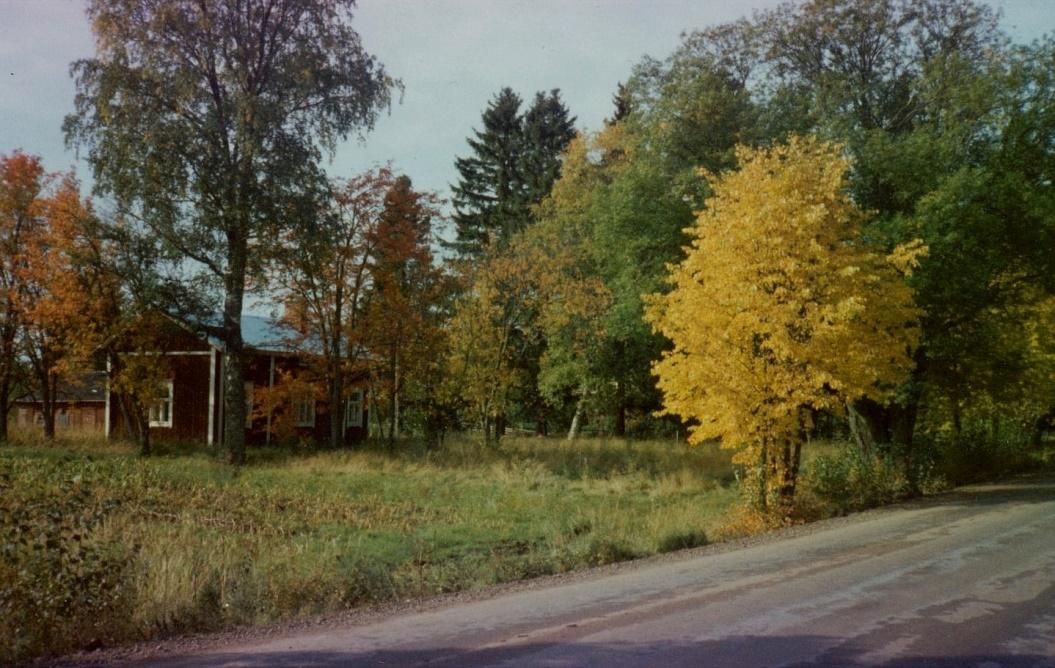 I mitten på 1980-talet så köpte grannen Kurt Långfors gården med den tillhörande tomten av Emil Sandbacka. Han behövde området för att kunna utöka växthusarealen och han sålde själva huset till Mörtmark. Foto från norr av Kurt Långfors.