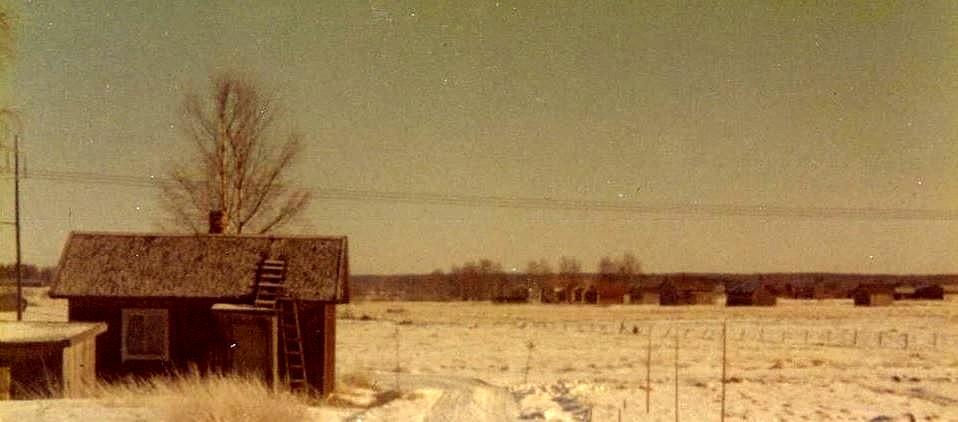 Denna stuga byggde Hemming Lövholm åt sig själv i början på 1950-talet. I bakgrunden syns Mannfolks gårdsgrupp och fotot är från 70-talet.