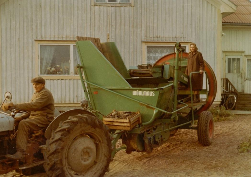 Här Eliel Holmberg med Lill-Ferguson och den första potatiströskan i Dagsmark. Den var en tysk Wühlmaus och Eliel köpte den i bolag med Albert och Gunni Skoglund.