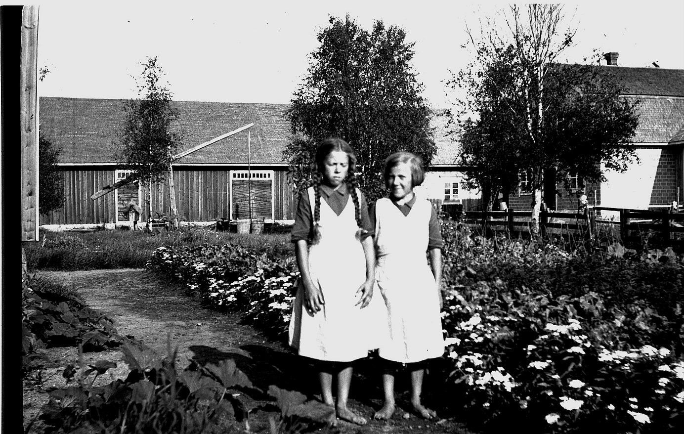 Här står barfotaflickorna Helga och Anna Englund och visar upp sitt. Selim Björses var lärare i Lappfjärd som ivrade för trädgårdsodling. Han var också fotograf som hann föreviga många personer och händelser mellan åren 1910-1950 i Lappfjärd men också i Dagsmark.