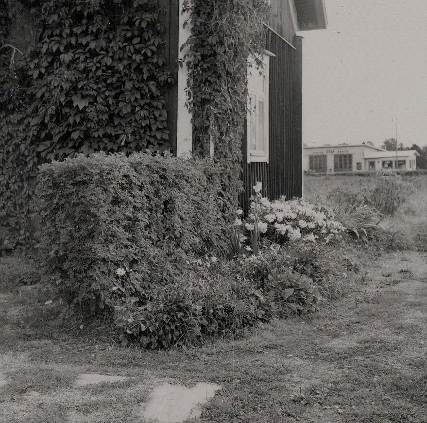 Blommor i gaveln hemma hos Ingmar. I bakgrunden servicestationen byggd 1965.
