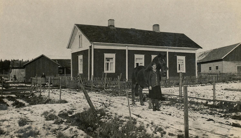 Så här såg Åsinas-Viktors gård ut i slutet på 1930-talet. I grinden står Viktors hustru Edla Maria (1869-1941) och ser på fröken Elin Rosenback är på väg ner mot Åbackvägen med hästen. Foto: Artur Lövholm.