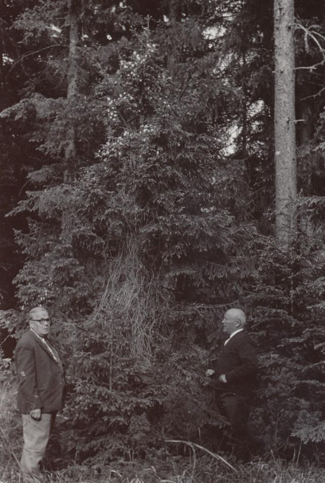 Här står Gunnar till höger och förevisar sipprankan i närheten av Bötombergen.