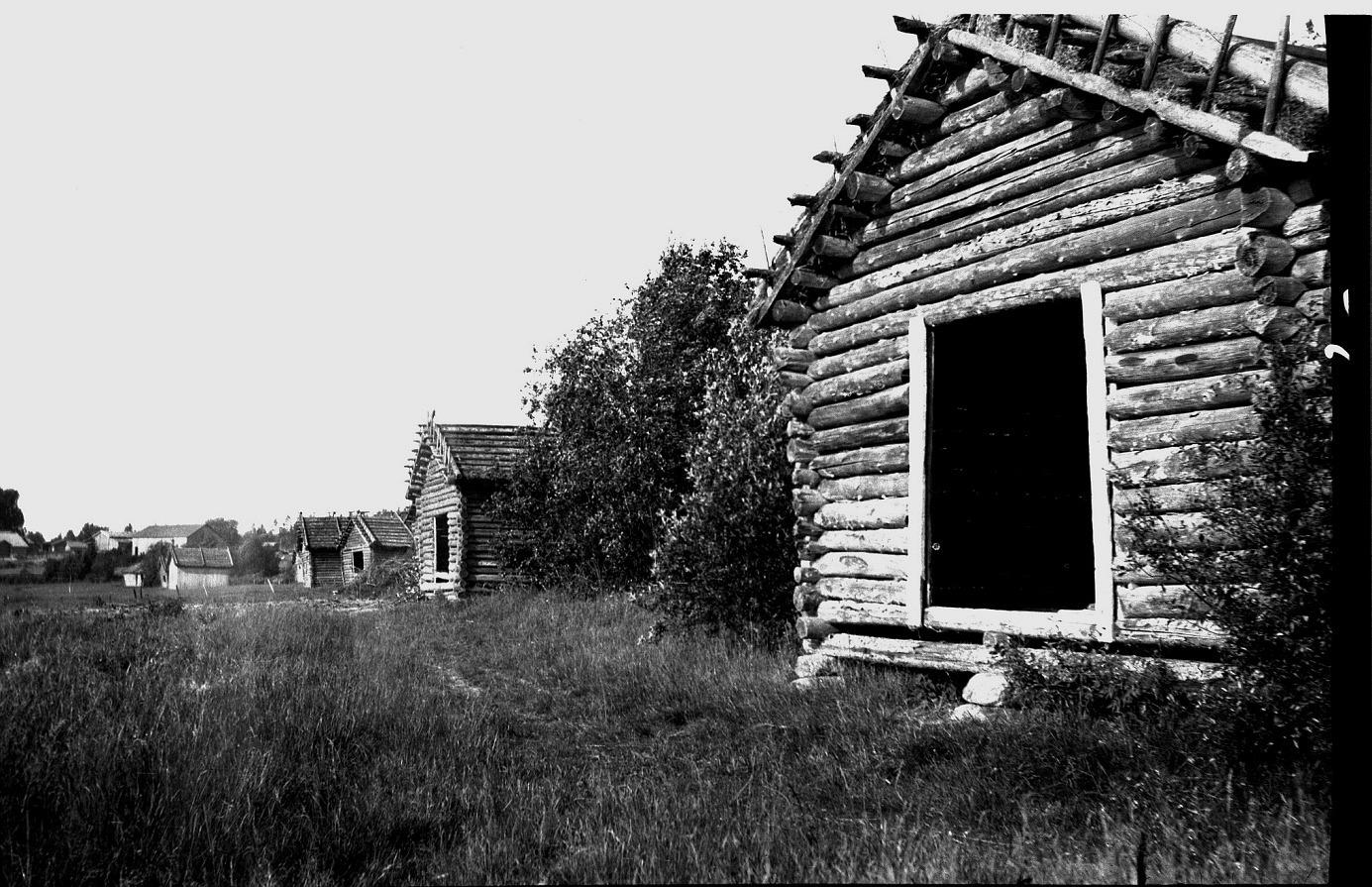 Enligt Helgas berättelse så sattes det torkade höet in i ladorna som fanns på stranden. På denna bild tagen av läraren Selim Björses ser vi hur ladorna står sida vid sida. Bondgården som skymtar i bakgrunden tillhörde Pelas-Mari, alltså Maria Lillkull (f. 1897) som var dotter till Pelas-Viktor. Hon var gift med Erland Granberg (1892-1953) som dog kort efter att han återvände från Amerika. Maria var ju mor till Rudi (f. 1924) som stupade i fortsättningskriget 1943. Maria hade också en dotter Ingrid Irene (1922-1938).