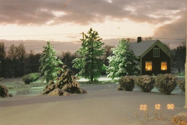 Nyholms gård fotograferad 1990.
