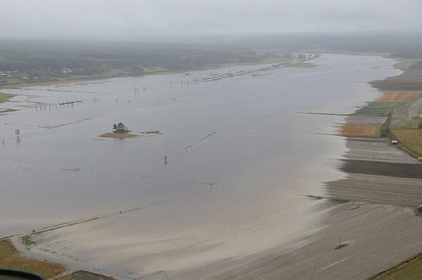 En stor del av träsket var översvämmat sommaren 2012 och skadorna på främst potatisodlingarna blev stora.