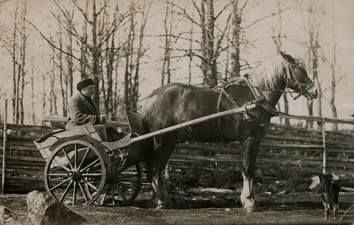 Här Erland Krook med hästen i slutet på 30-talet hemma i Dagsmark.