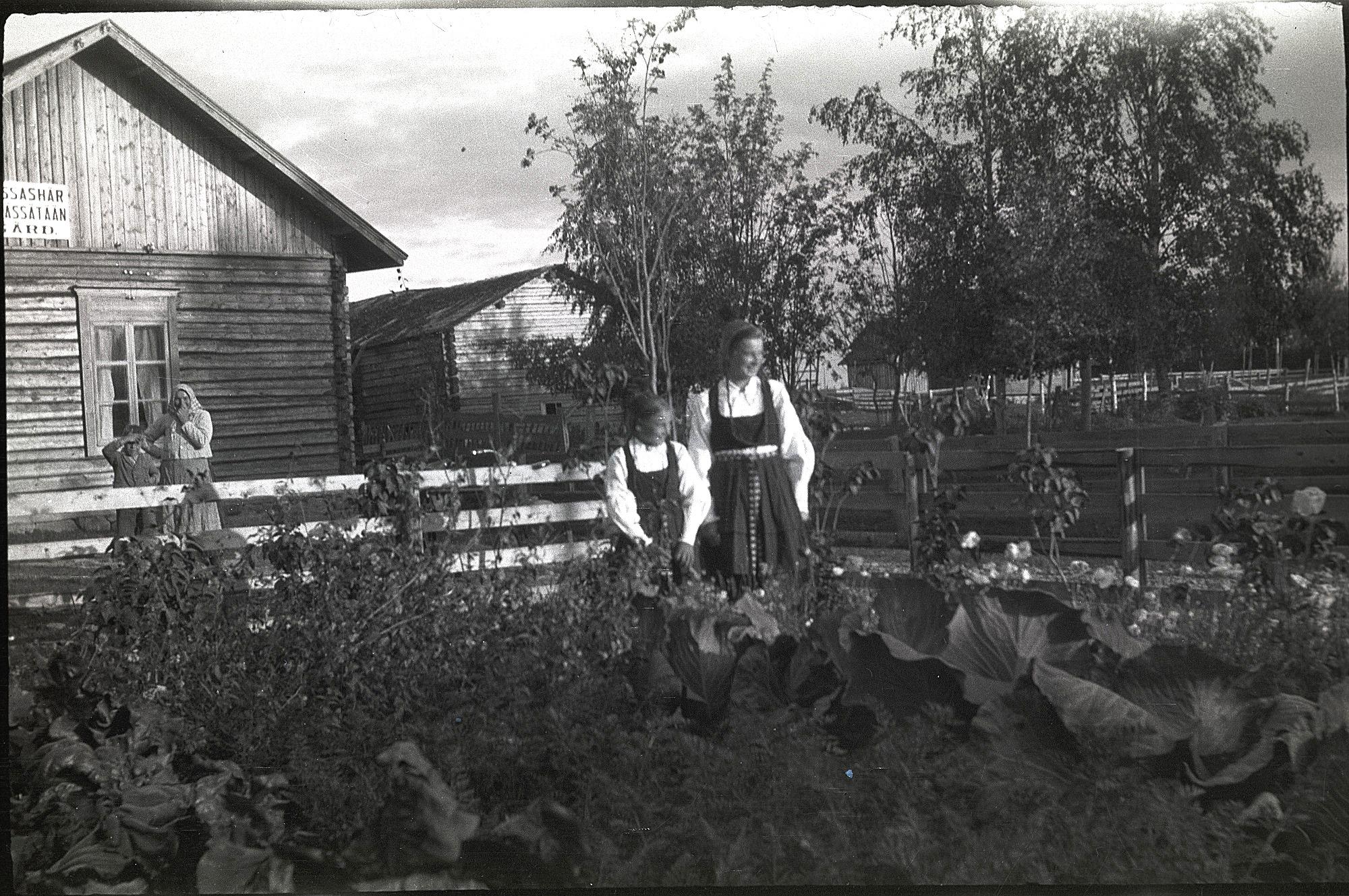 """Här systrarna Astrid Nygård, gift Ingves och Anni Nygård, gift Klemets i sitt klubbland. Möjligtvis är det broder Thure med mamma Maria som stå bakom planket. På skylten på väggen står det: """"Tyger pressas här""""."""