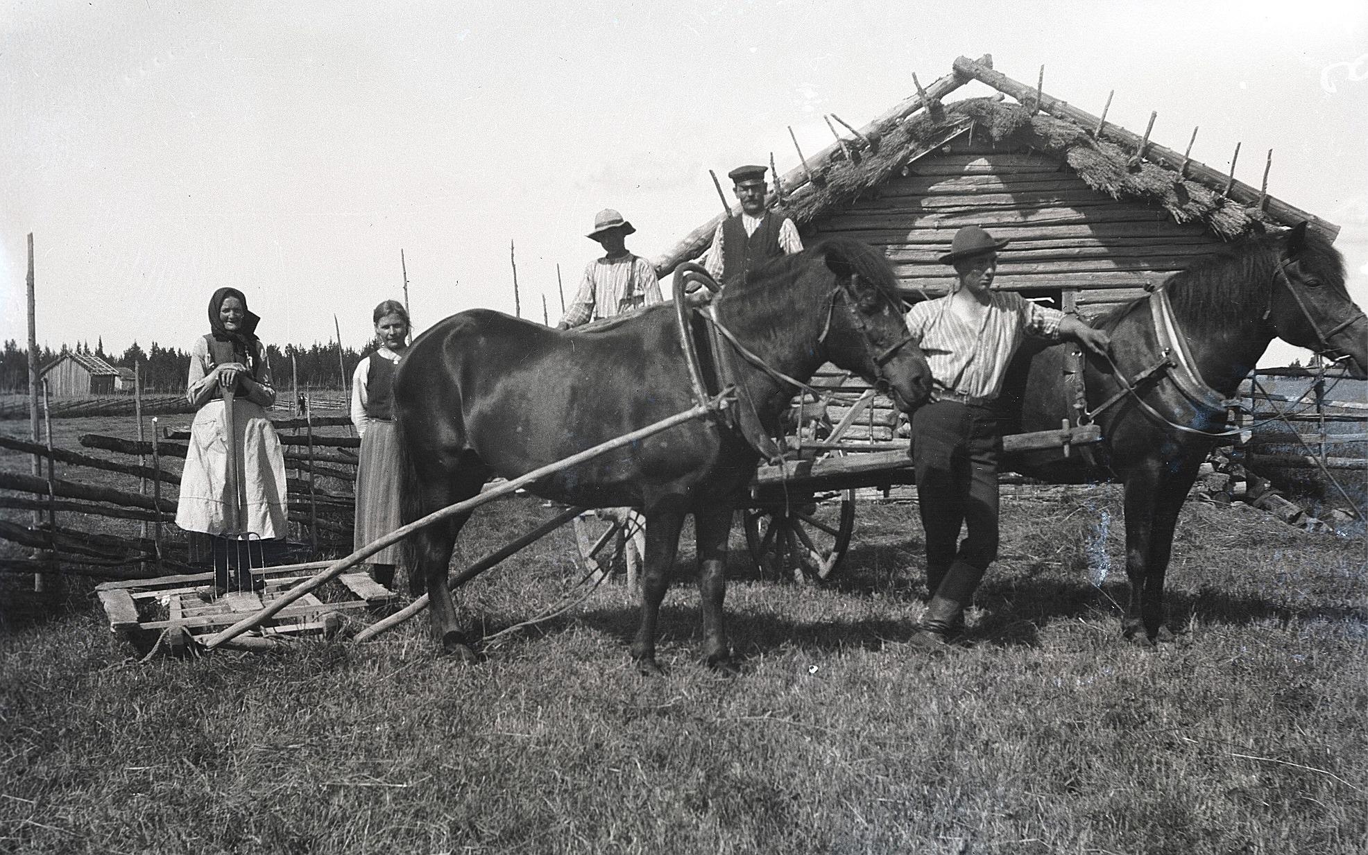 Så här kunde det se ut på åkrarna där hästarna gjorde grovjobbet. Till vänster en typisk stocklada med halmtak.