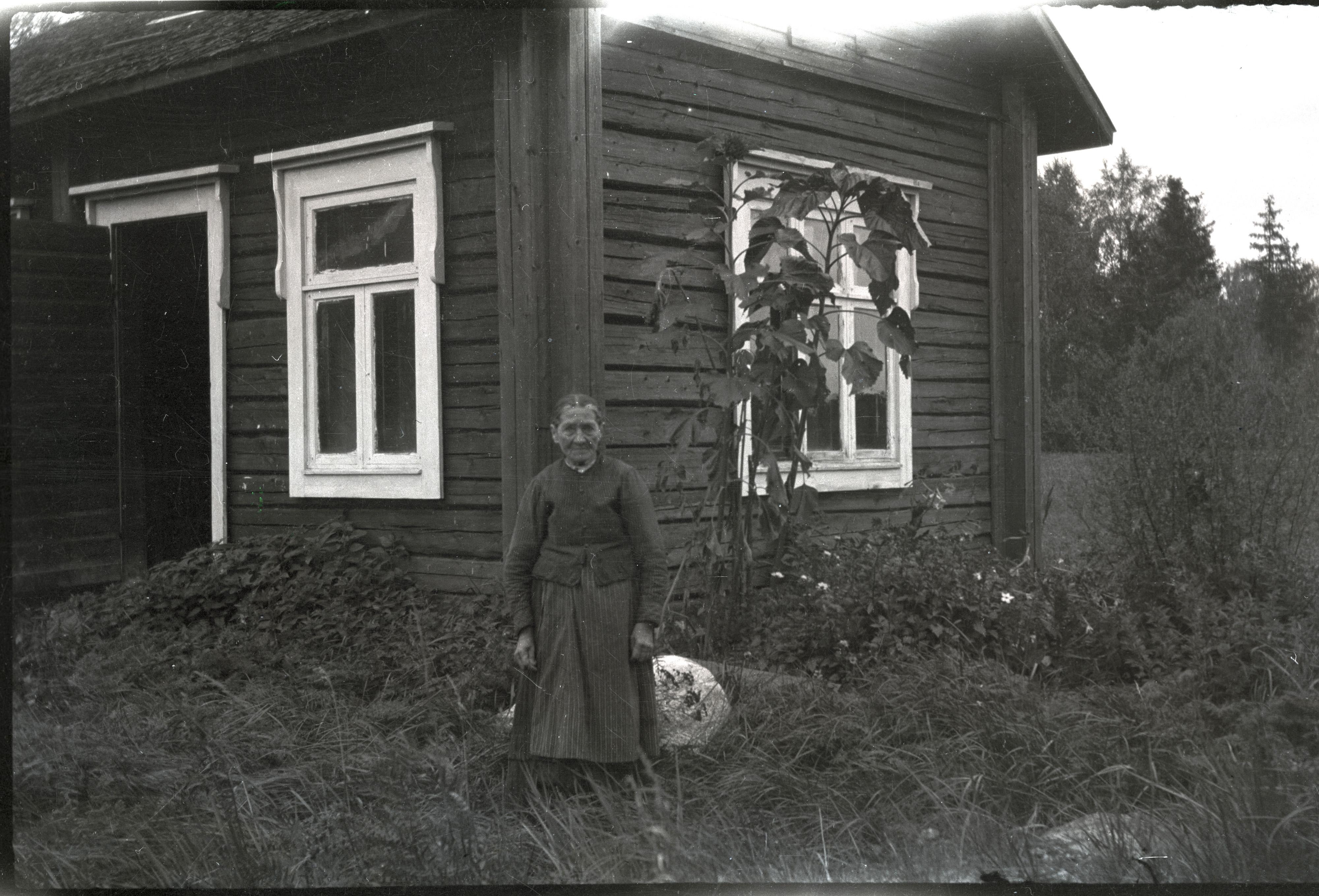 """""""Skol-Gret"""" var lärarinna Basts trotjänarinna som tvättade, städade, kokade, sprang ärenden, hämtade mjölk och handlade. En liten späd kvinna med långa armar, här fotograferad utanför skolbastun och tvättstugan. Själv bodde hon 200 meter söderut från skolan i en stuga som sedan Sandra Granqvist övertog och efter henne Eva, Elsa och Anni Vesterlund."""