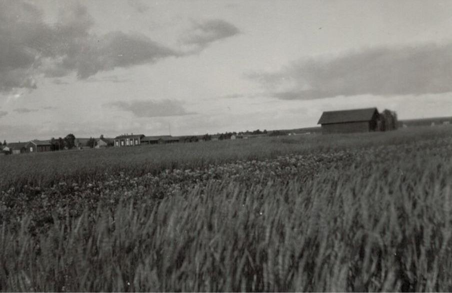 Från Mosspott tå syns Ebbgårdarna i bakgrunden till vänster.