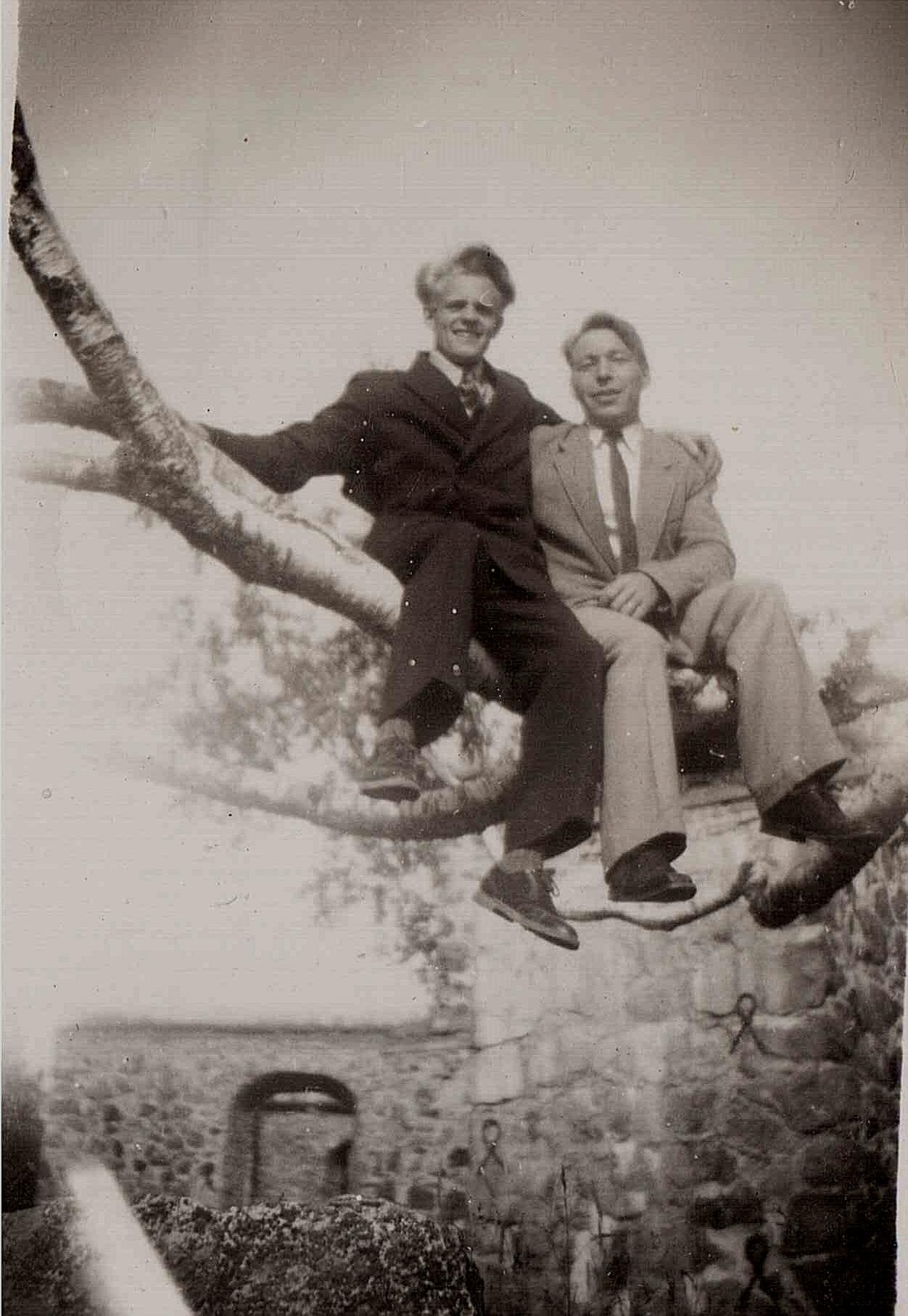 Nils Granlund och Allan Wester uppe i ett träd i Gamla Vasa.