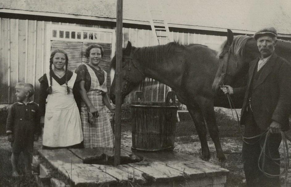 Här står Paul, Helga och Inga tillsammans med pappa Erik Anders och vattnar de båda hästarna. Fotot från mitten på 30-talet.