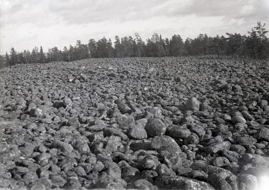 Så här såg Jungfrudansen på Bötombergen ut 1932 och den ser fortfarande likadan ut.
