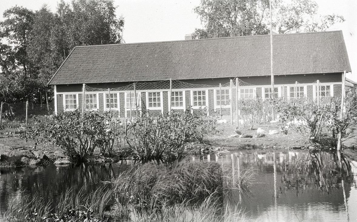 Ett större hönshus i Lappfjärd år 1933.