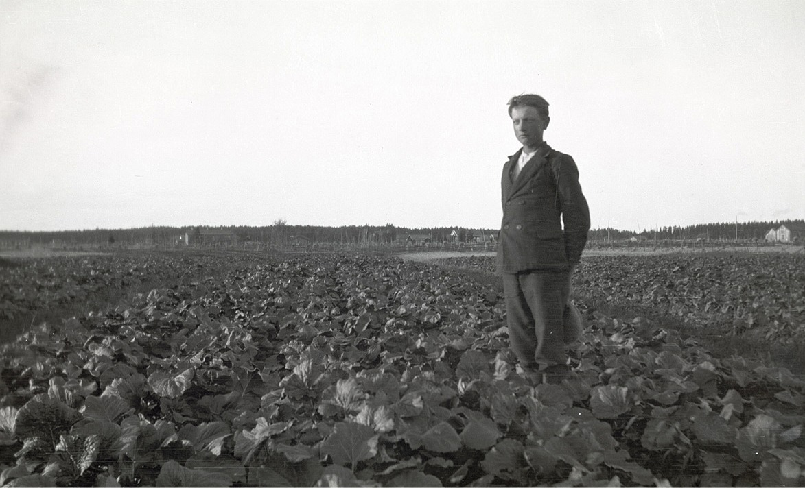 "Elis Mannfolk i sitt turnipsland. I bakgrunden skymtar ""Smegålan""."