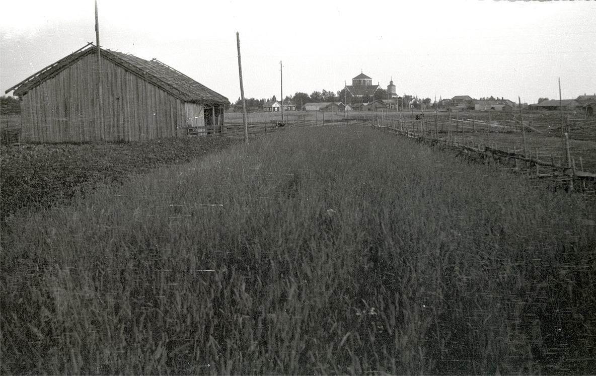 Lappfjärds kyrka fotograferad från Selim Björses barndomshem med rian till vänster. Längre fram Björknäs, Bergkulla och Gullmes gårdar.