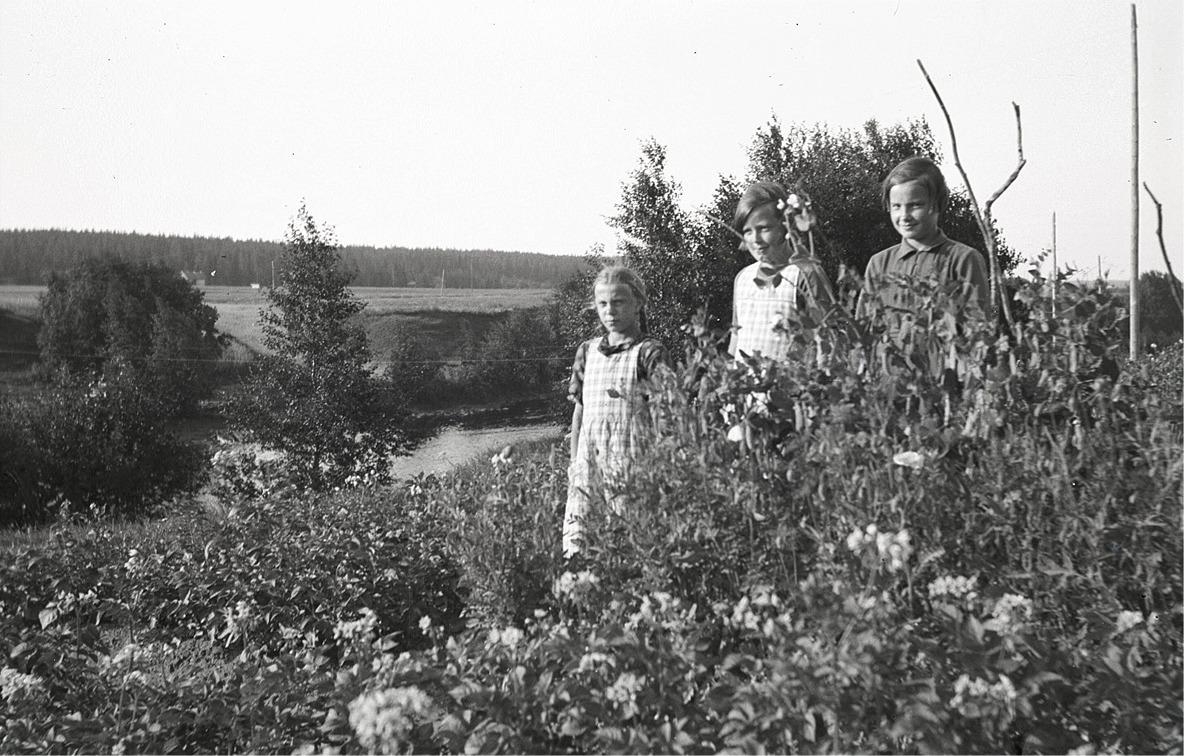 Till vänster Ellen Westerback i sitt klubbland på Brobackan i Dagsmark. I mitten Lilli Eklund och till höger Else Rosenback.