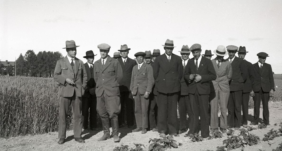 De här medlemmarna i Lantmannagillet beundrar grödorna under en utfärd till Terjärv.