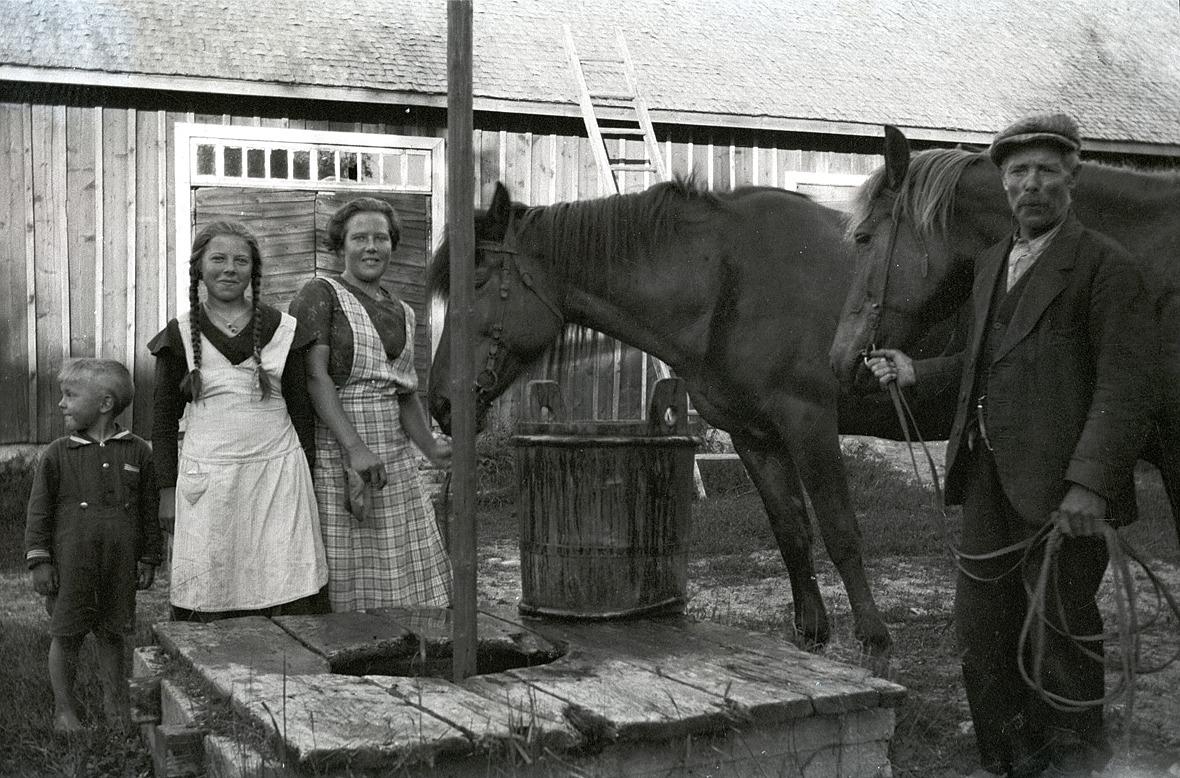 Paul tittar åt sidan medan hans systrar Helga och Inga vattnar de två hästarna tillsammans med pappa Erik Anders Englund i Palon i Dagsmark.