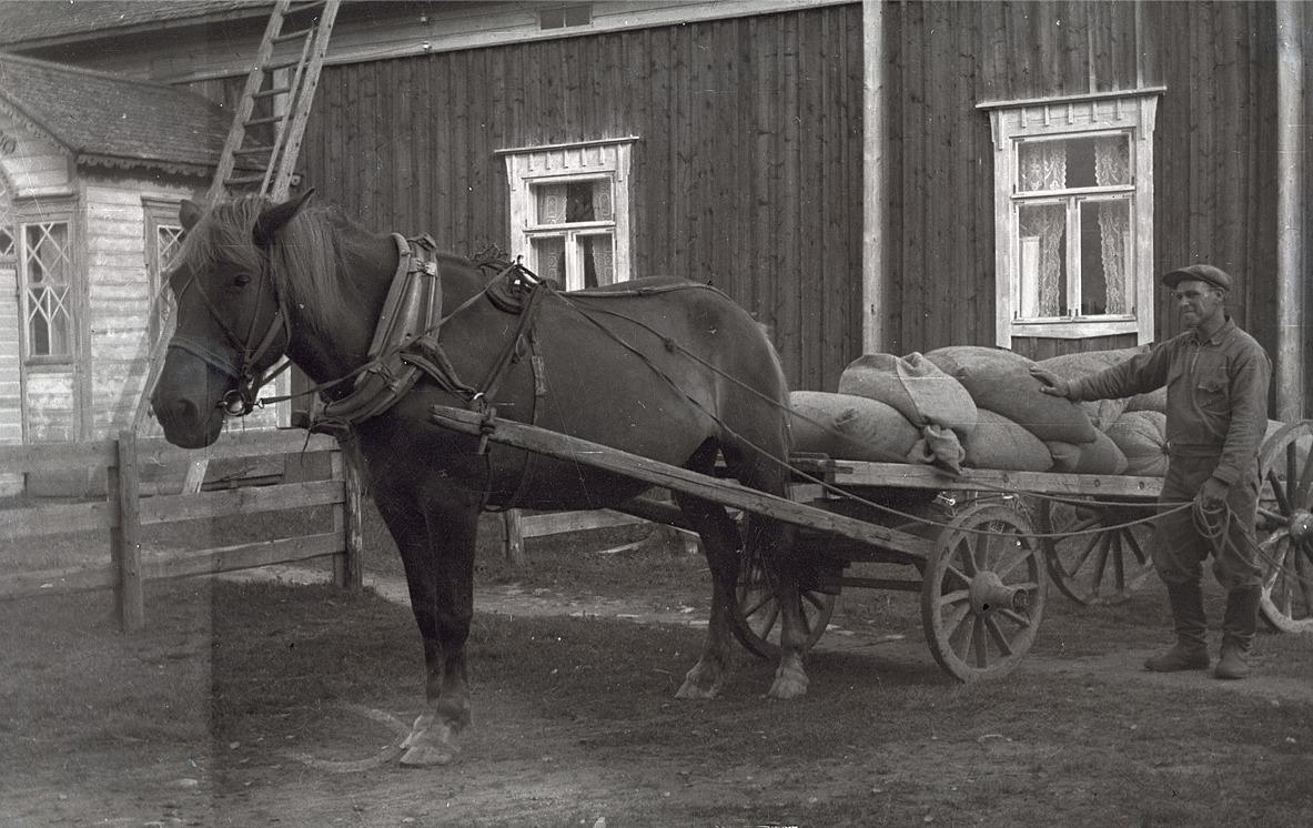 Selim Björknäs med häst och kärra utanför hemgården.