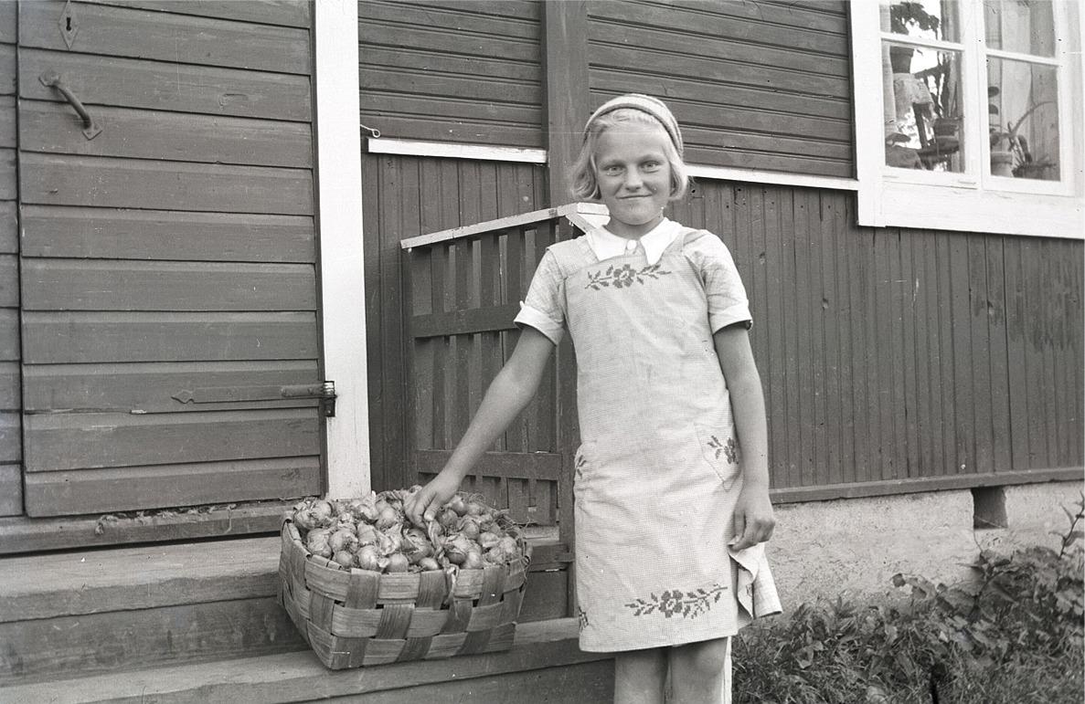 Doris Bergmark, som sedan gifte sig med Gösta Uljens står här och visar upp sin korg med lökar.