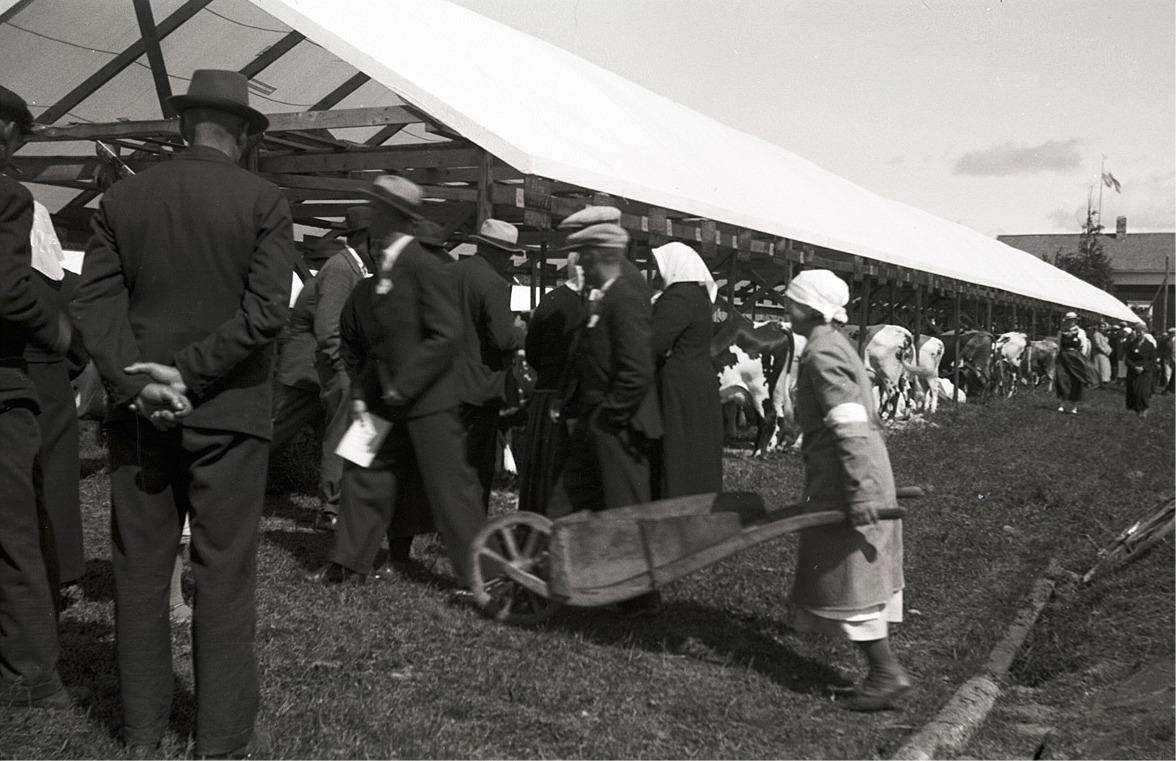 Publiken bekantar sig med djuren, medan kvinnan med en tidstypisk handkärra transporterar allehanda varor.