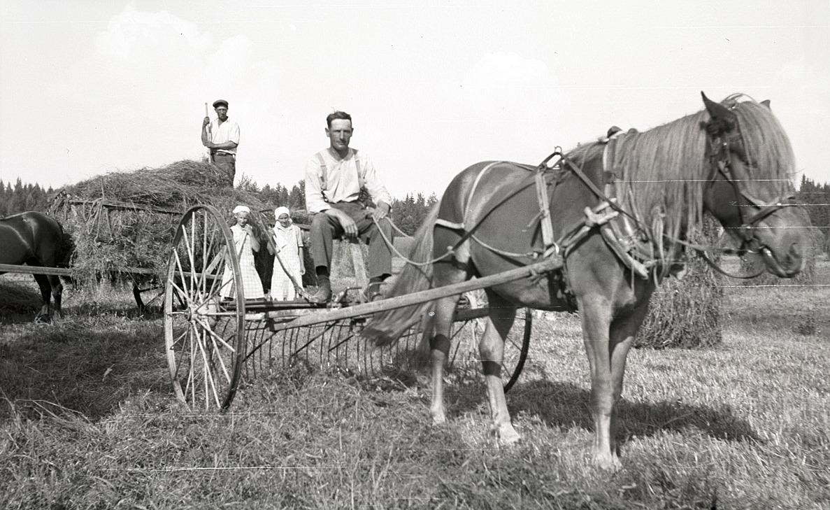 Artur Björses på hästräfsan.