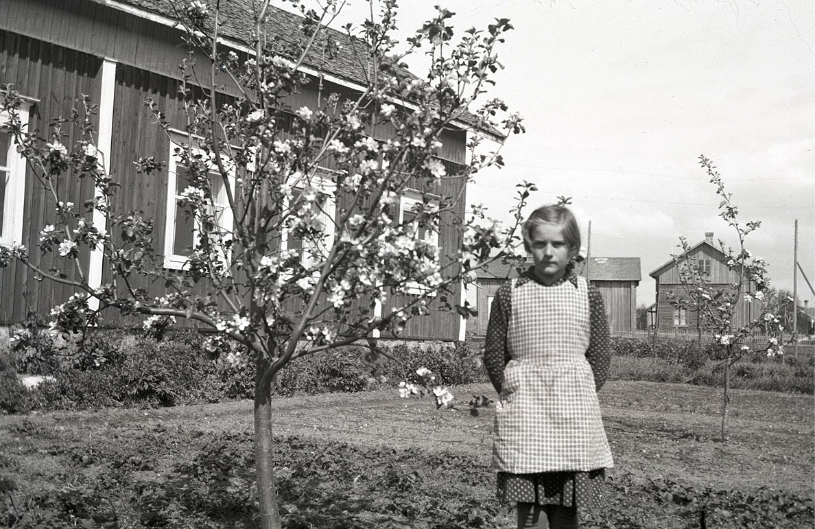Okänd flicka står bredvid det blommande äppelträdet.