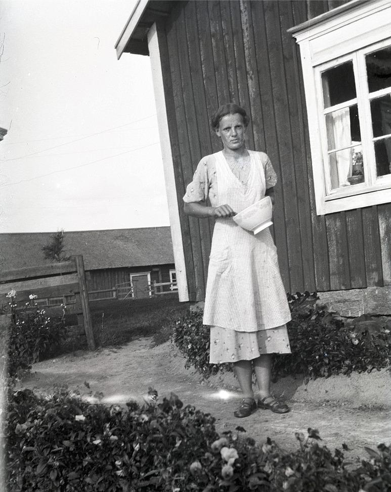 Anni Enlund som följande år skulle gifta sig med Birger Holm står här och vispar till en kaka bland blommor och blad.