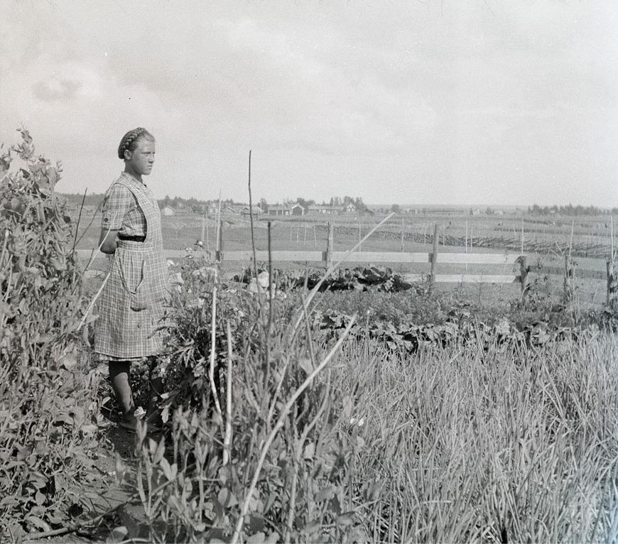 """Emil Stenholms dotter Greta (f.1924) blickar ut över sitt klubbland. """"Sme gårdarna"""" på Kullan syns i bakgrunden."""