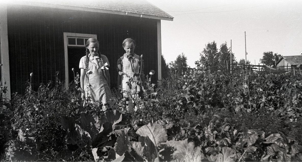 Till vänster Gerda Klåvus (1925-1945) i sin trädgård tillsammans med grannflickan Verna Agnäs, senare gift Björkskog