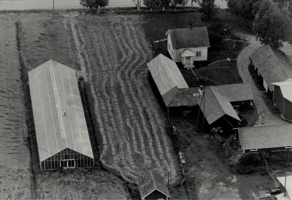 På 1970-talet byggde Gunnar Norrgård ett växthus bredvid lillstugan men detta revs sedan någon gång på 80-talet.