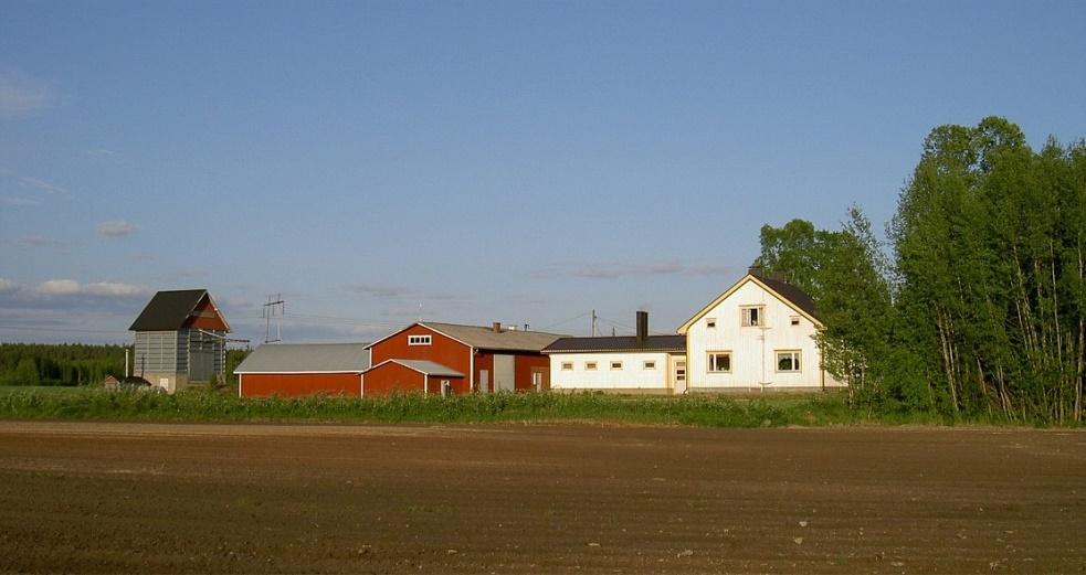 Så här såg det ut där Jöranas eller hos Norrgård sommaren 2003, fotograferat från väster.